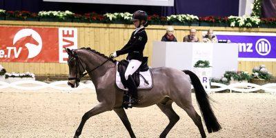 Junger Reiter auf Pony